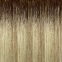 Ombre Remy Hair