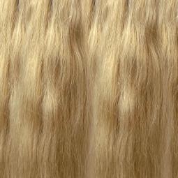 Warm Blonde #613 Remy Hair