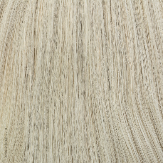 Ombre Blonde #60 & Light Brown Russian Hair